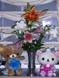 百合の花が咲いたでふ♪